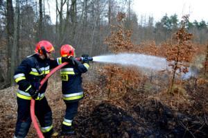 31.03.2019 - Pożar Wieszowa