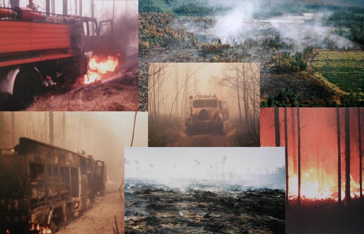 Pożar lasu Kuźnia Raciborska